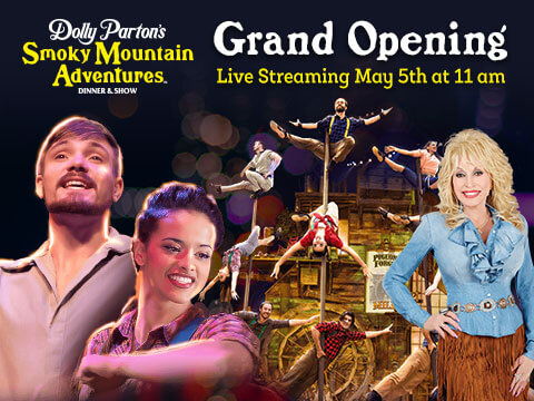Grand Opening Live Stream With Dolly