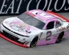 Dolly Parton and Dollywood Sponsored NASCAR at BMS Photo Credit: Bristol Herald Courier, David Crigger.
