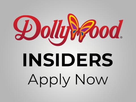 Dollywood Searches For 20 Brand Experts