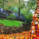 Fall for the Sights, Sounds and Smells at Dollywood